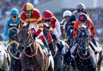 at yarışı kupon yapma, at yarışı nasıl oynanır, altılı kupon nasıl doldurulur, altılı ganyan nasıl oynanır, tjk at yarışı, tjk altılı ganyan